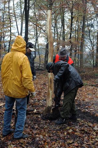 Waldspielplatz-Aktionstag 10.11.2012
