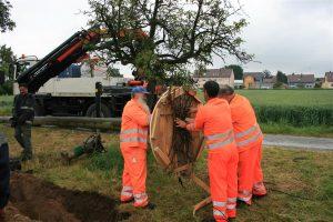 In Zusammenarbeit mit dem städtischen Bauhof hat die EnBW dem Storchenpaar ein neues Heim gegeben