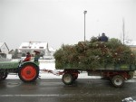 Weihnachtsbäume: Abholung am 9. Januar 2016
