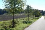 Abenteuerspielplatz für Friedrichstal in Planung