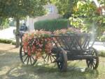 Blumenschmuck in Staffort abgeräumt