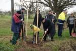 Erdgas Südwest stiftet 50 Bäume