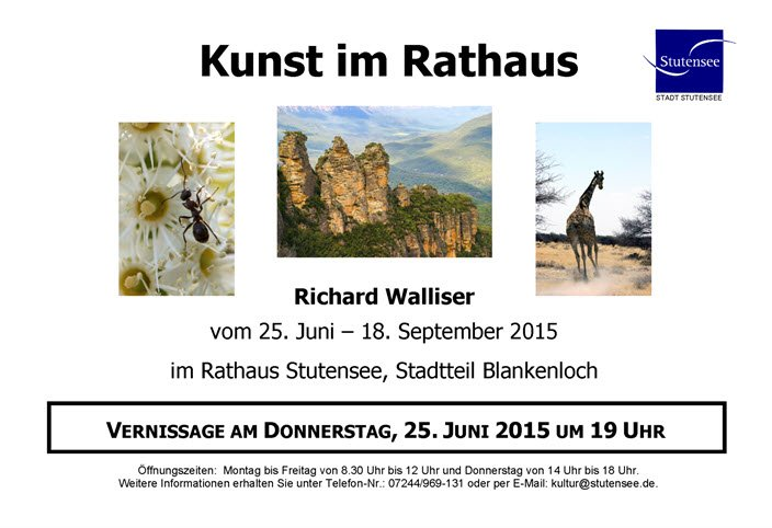 Vernissage RIchard Walliser
