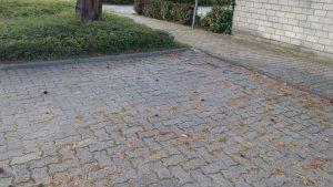 Parkplatzschäden Karlsruher Ring