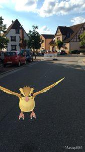 Pokémon auf dem Spöcker Straßenfest